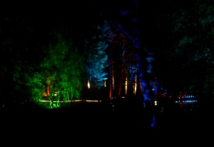 09-10-12 Enchanted forest