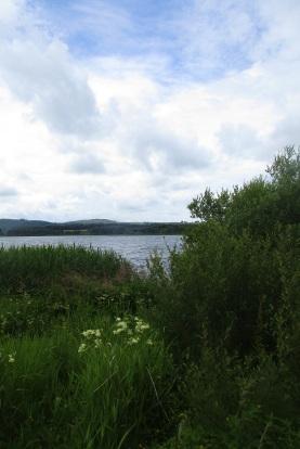 30-06-16 05 Castle Loch.JPG